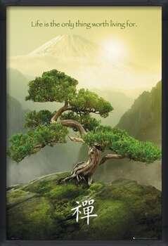 Gerahmte Poster Zen