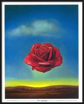 Gerahmte Poster Meditative Rose, 1958
