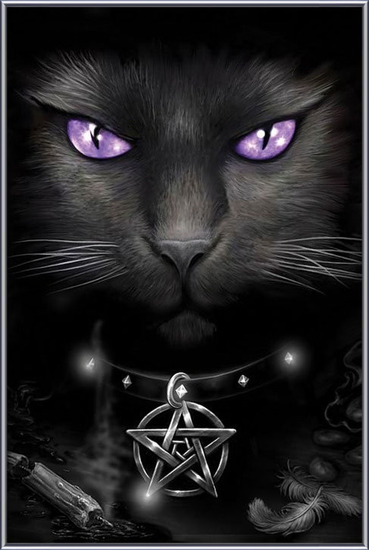 Magical cat Poster